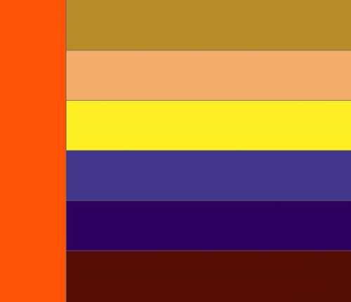 оранжевый и его оттенки как их правильно сочетать между собой